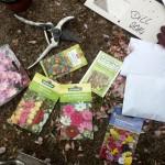 Urban Gardening Lorenzplatz 1